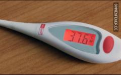 Fieber messen gegen ein entsprechendes TG?