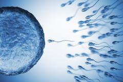 Sperma-Maschine sucht schluckfreudige SIE